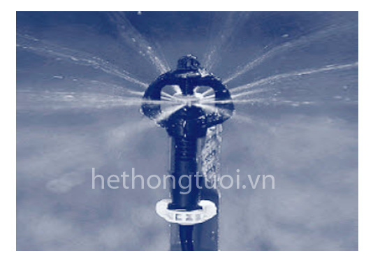 Vòi phun mưa Supernet - Israel